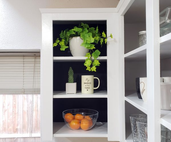 Open Door Cabinets by Boston Cabinet Cures
